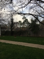 After emergency storm work for tree service tulsa