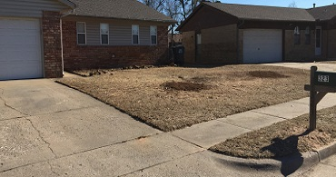 Tulsa Stump Grinding